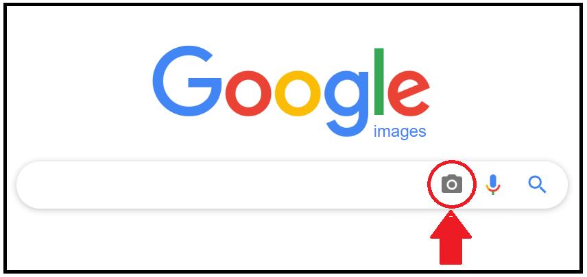 Google for Fighting Fake News